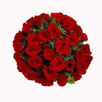 Convey the message of 'Just Love' with basket of roses